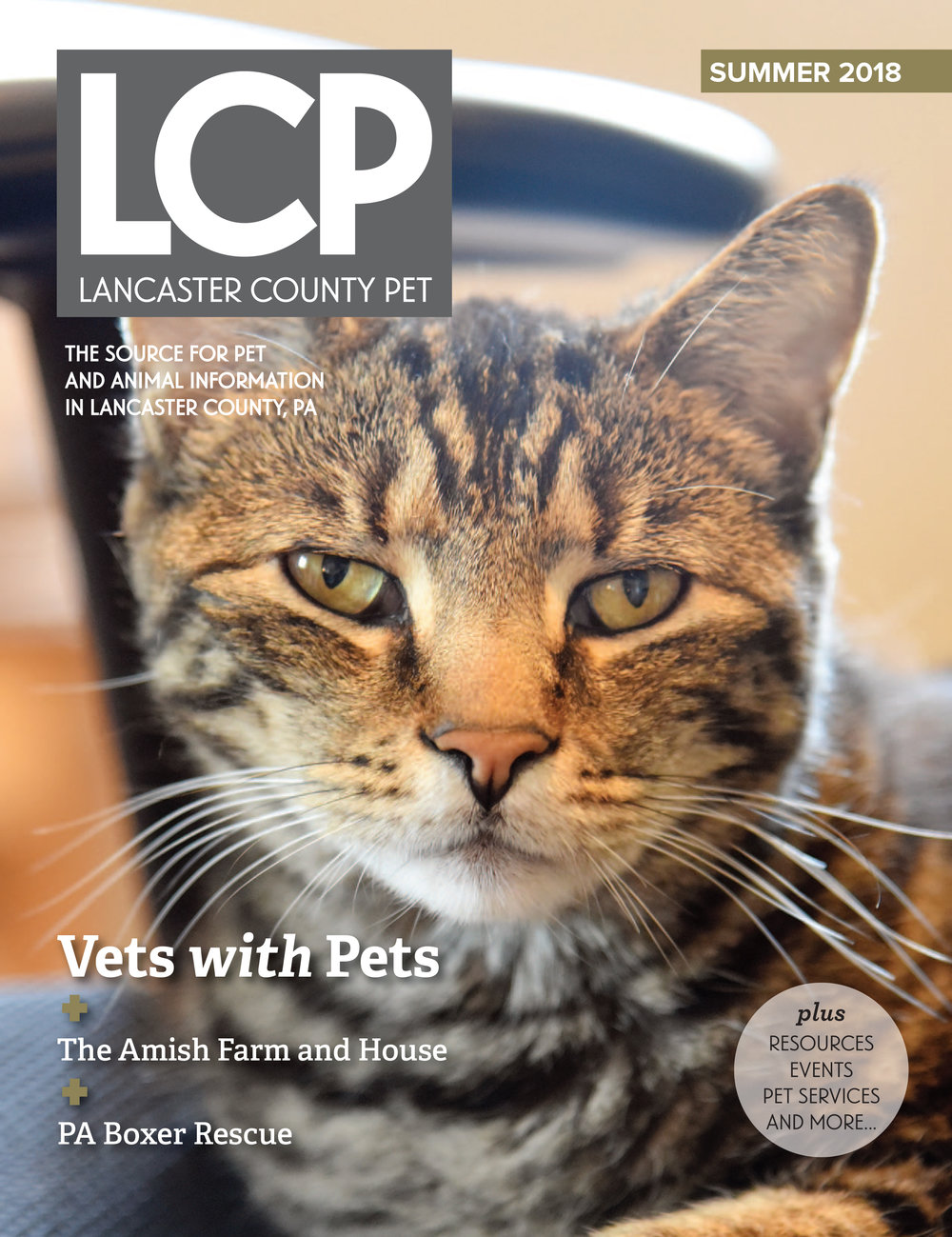 Summer 2018 Issue. Click on image to view.