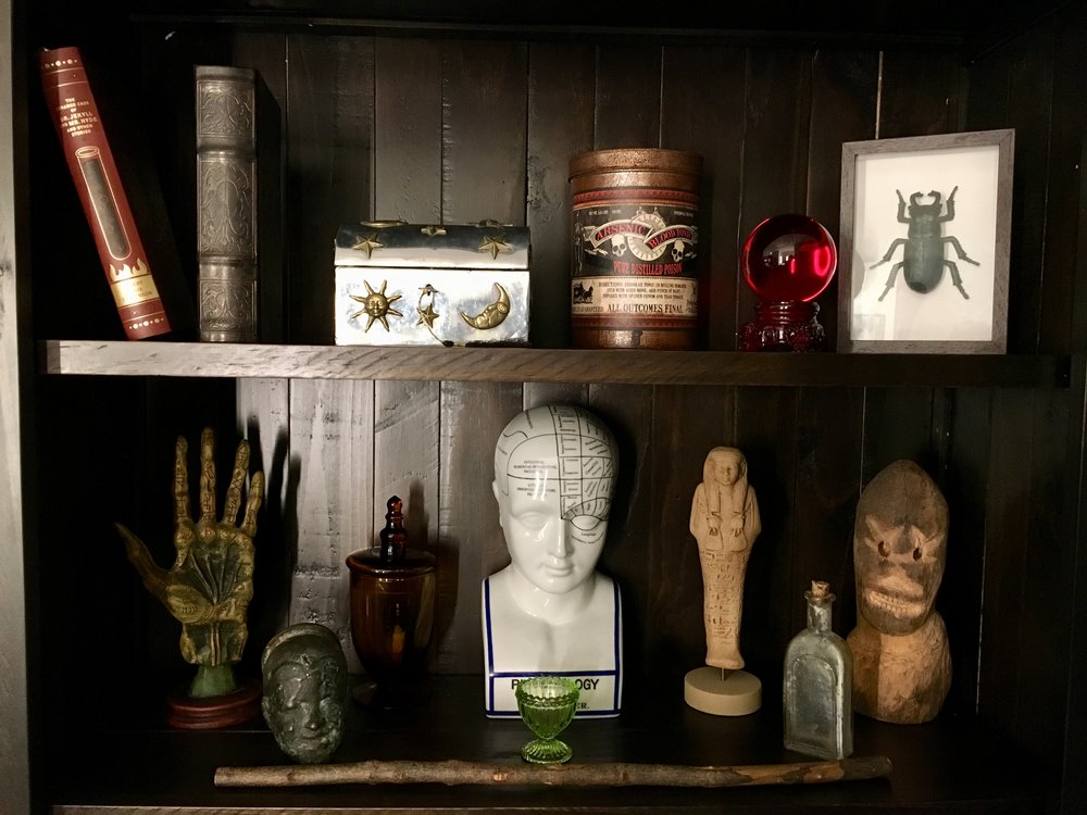 David parr's cabinet of curiosities - EVERY SHELF OFFERS AN ENCOUNTER WITH SOMETHING WEIRD AND WONDERFUL