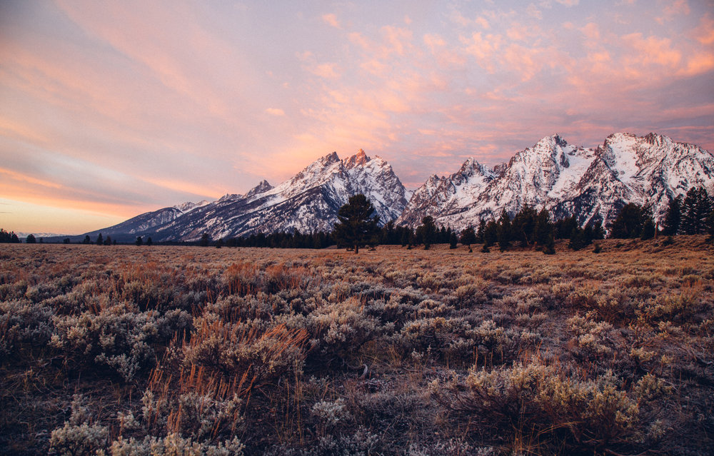 Grand Teton National Park. Photo credit: Hunter Day photography