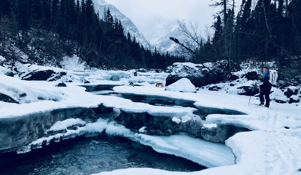 Alaska Chugach State Park Photo Credit Katie Strong 1.JPG
