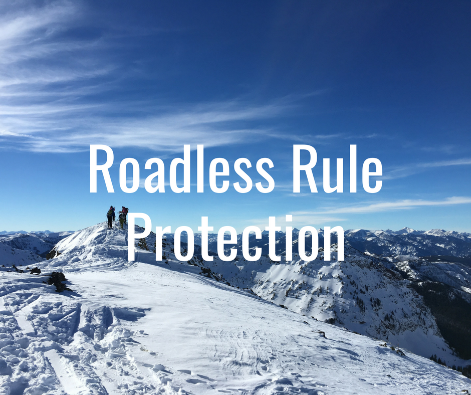 The Roadless Rule protects hundreds of thousands of acres of prime backcountry recreation. Lawmakers in Alaska and across the country are attempting to undermine the Rule that protects these areas by seeking exemptions, which will ultimately set precedent that could invalidate national Roadless protections across the country.