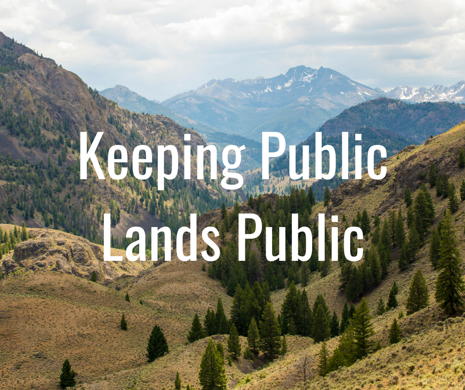 In recent years, the threat of large-scale transfer of public lands to the states has largely evolved into efforts to transfer control over those resources to smaller, less accountable entities. We oppose efforts to transfer public lands out of the hands of the American public.