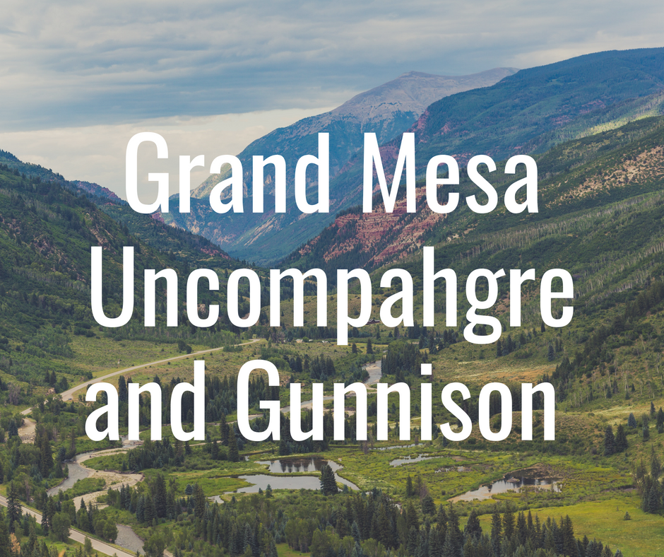 The Grand Mesa, Uncompahgre, Gunnison National Forests (GMUG) stretch from the high Sawatch Range peaks of the Continental Divide to the plateaus and canyons of Colorado's Western Slope, encompassing some of the most remote and beautiful landscapes in Colorado.