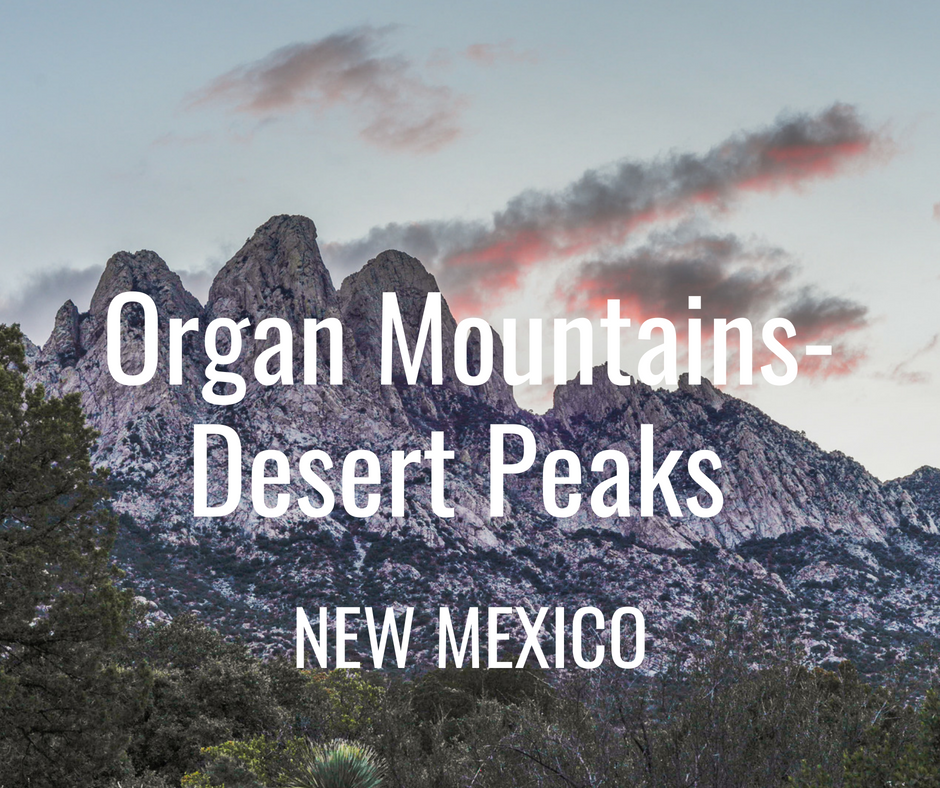 Organ Mountains.png