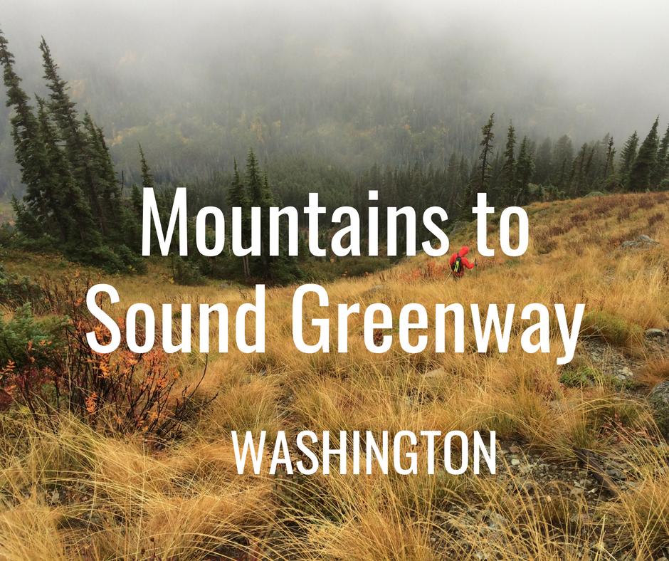 Washington Greenway.png