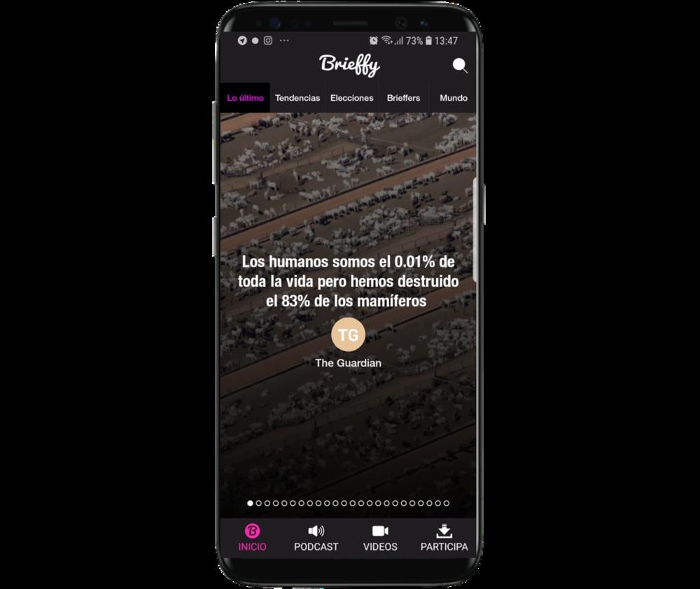 Brieffy app
