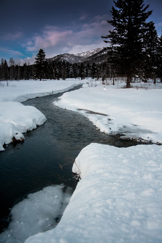 Island Park winter stream.jpg