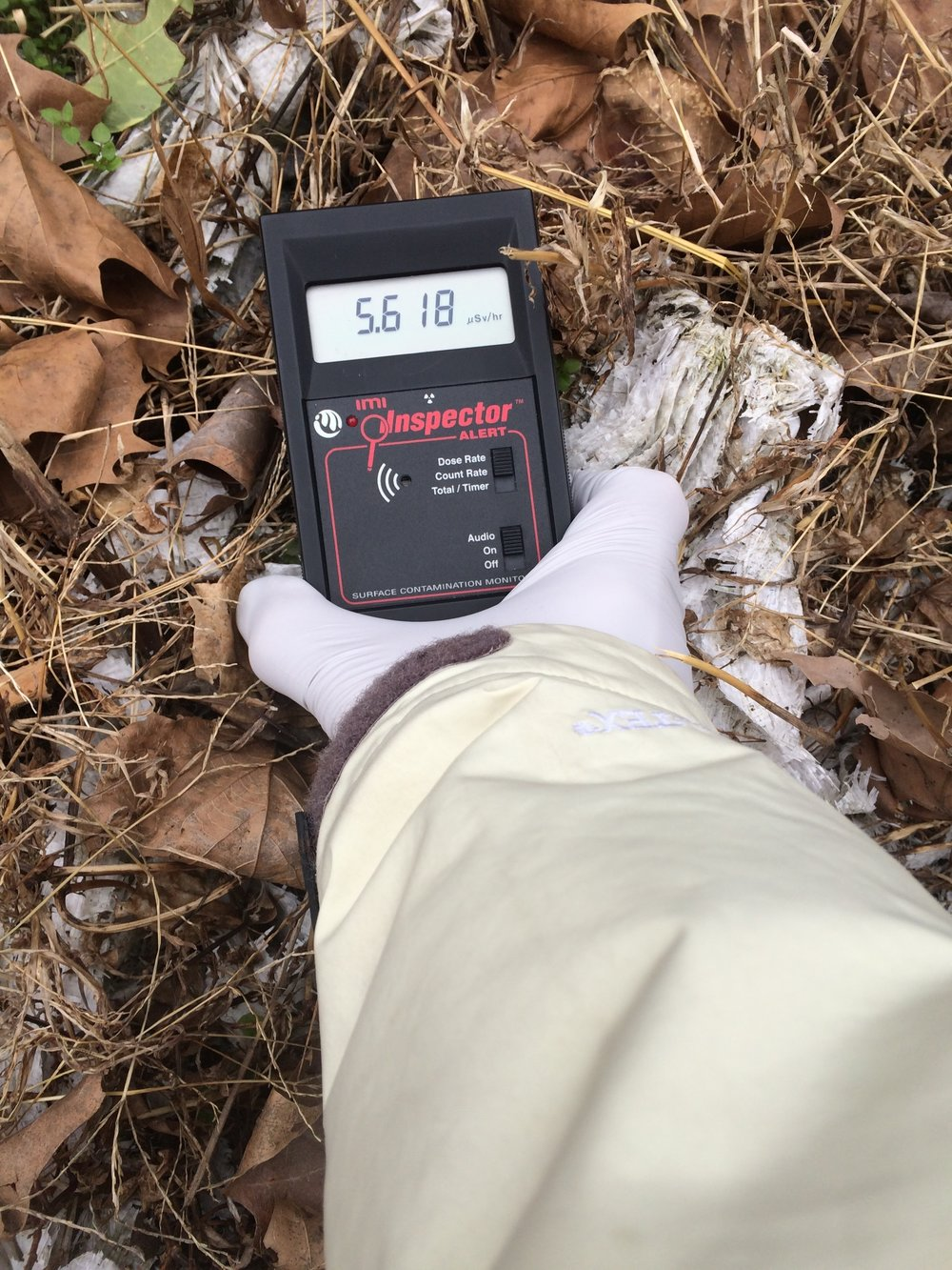 Radiation next to a driveway of a house where people were still residing. Measured 5.618 micro Sieverts/hour. 50x the normal background.