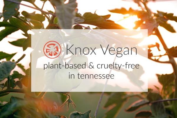 Vegan-Friendly Knoxville Restaurants