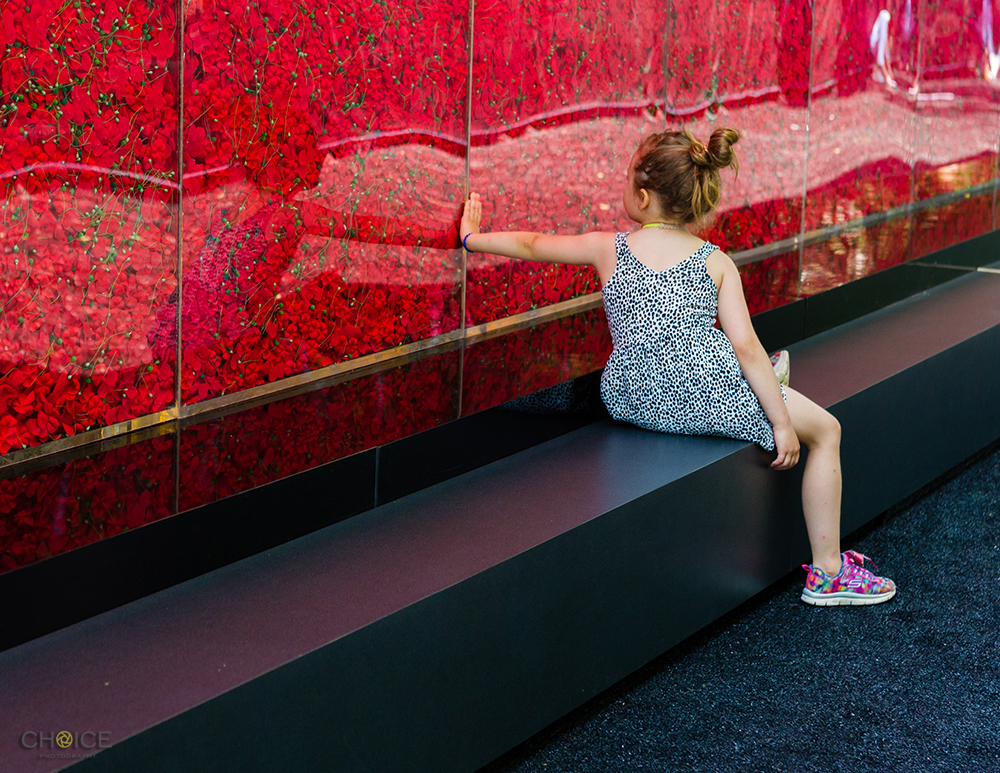 Girl visits The Poppy Memorial, a temporary memorial made by USAA consisting of more than 645,000 poppy flowers, with each flower honoring a fallen military servicemember since World War I, is seen at the National Mall on May 25, 2018 in Washington, D.C. (Photo by Rodney Choice/AP Images for USAA)
