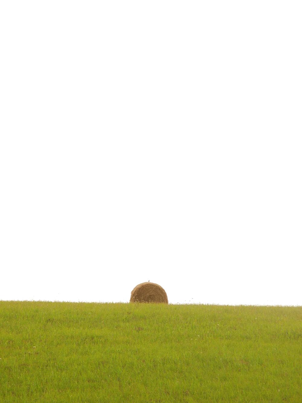 haybales1.jpg
