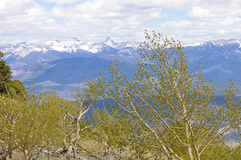 Spruce Mt 5 - cimarron2.jpg