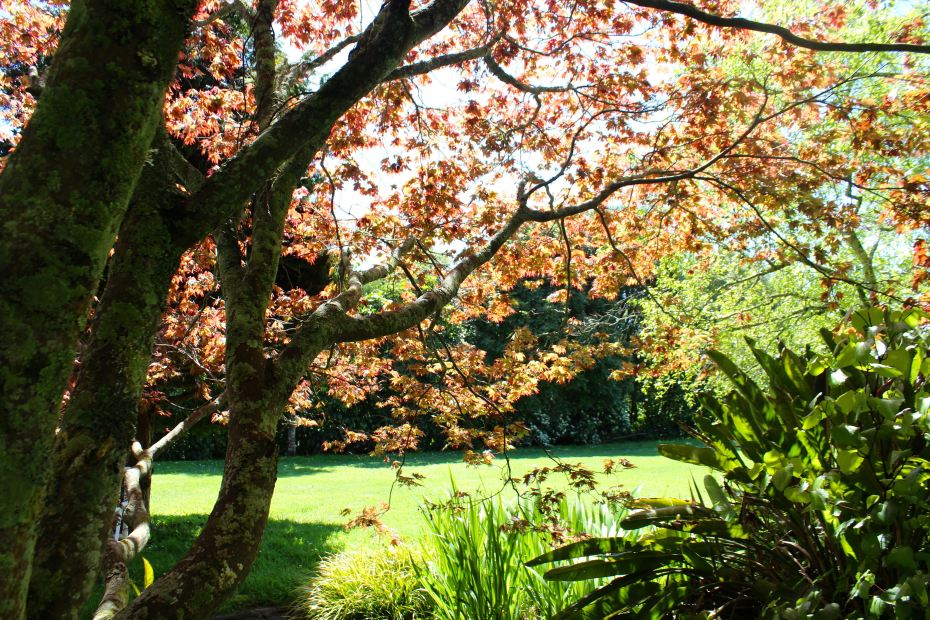 Te Moata retreat centre and the art of mindfulness