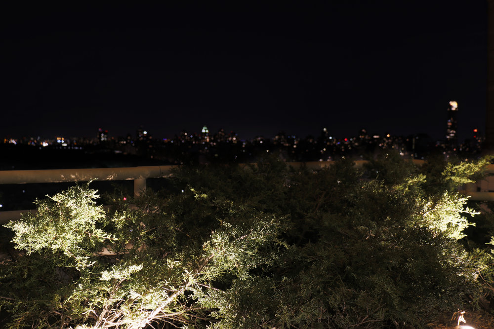 Blurred Skyline.jpg