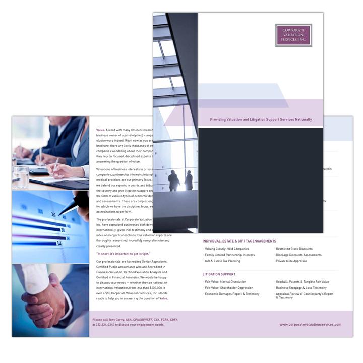CVS_Brochure.jpg