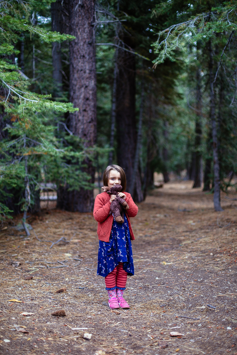 lake tahoe camping sugar pine  (20 of 61).jpg