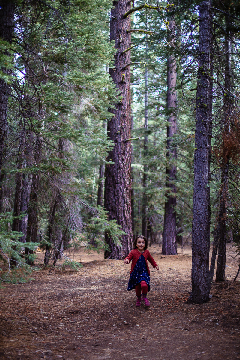 lake tahoe camping sugar pine  (33 of 61).jpg
