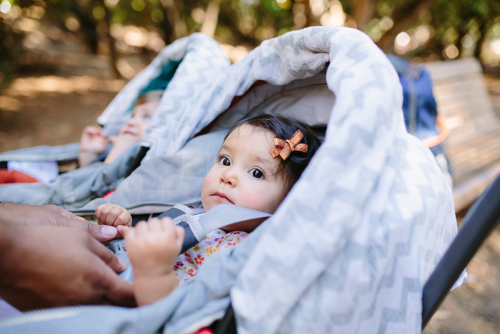 san francisco bay area newborn photographer (35 of 181).jpg