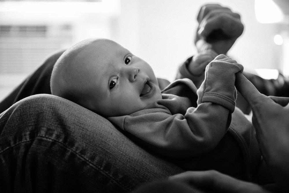 san francisco bay area newborn session