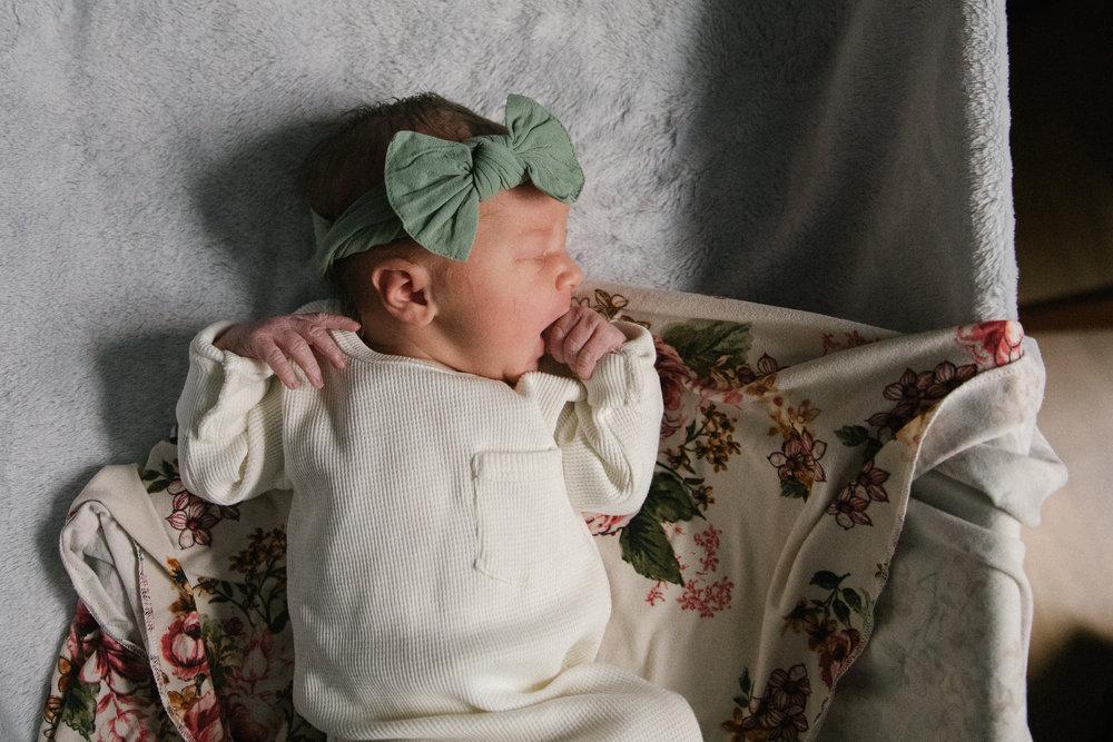 newborn baby girl bow