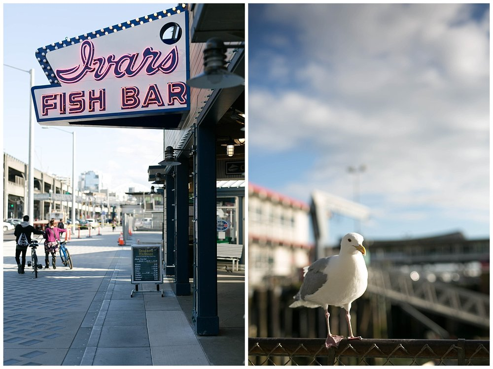 And now we move on to the most magical part of the day.  Ivars Fish Bar  has been around for almost 80 years and it is hard to tell what I loved more... the fish and chips were delicious but the SEAGULLS WERE AMAZING! They are super tame and love french fries almost as much as I do.