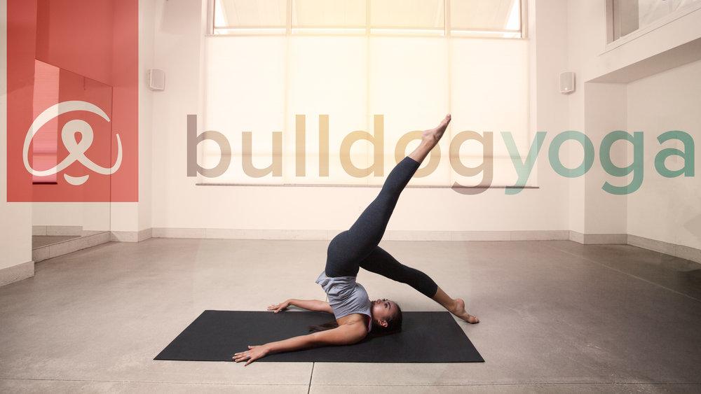 bulldog-yoga-5711.jpg