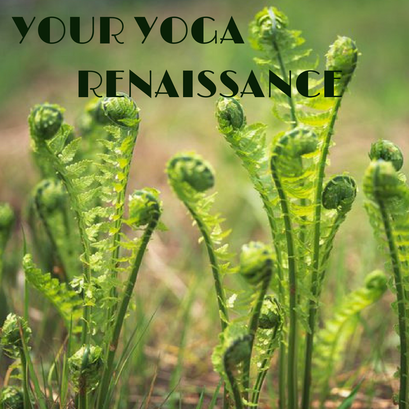 YourYoga Renaissance.png