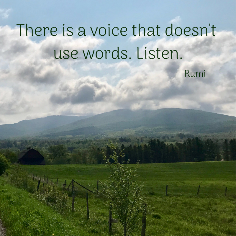 There is a voice that doesn't use words. Listen..png
