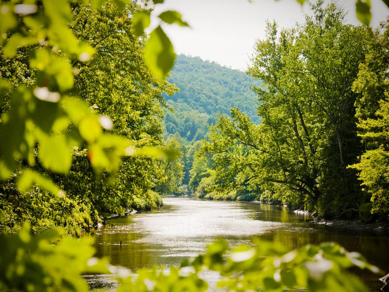 camping-nature-plein-air-riviere-missisquoi.jpg