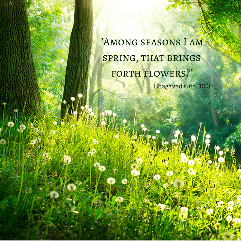 Among seasons I am spring, that brings forth flowers.%22.png
