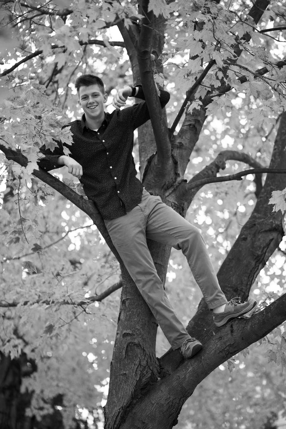 andy_maue_senior_portraits_2017_fall_autumn.jpg