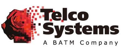 Telco_Systems_-_Logo.jpg