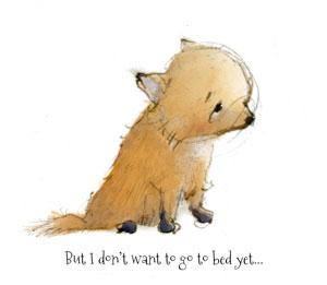 fox-kit-9--bedtime-300px.jpg