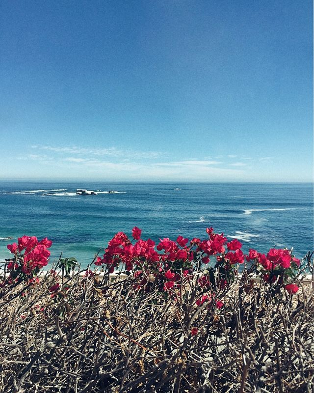 When the soul is thirsty, show it to the sea. . . . . . . . . . . . . . . . #oceantherapy #createtheextraordinary #vsco_lover #vscocapetown #clifton #beachside #capetown #igerscapetown #igdaily #traveler #paradise #loveafrica #instagood #lovecapetown #cityofcapetown #ocean