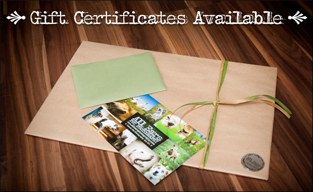 blog_giftcertificates
