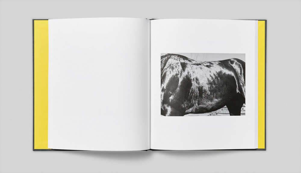 book_product_4.jpg