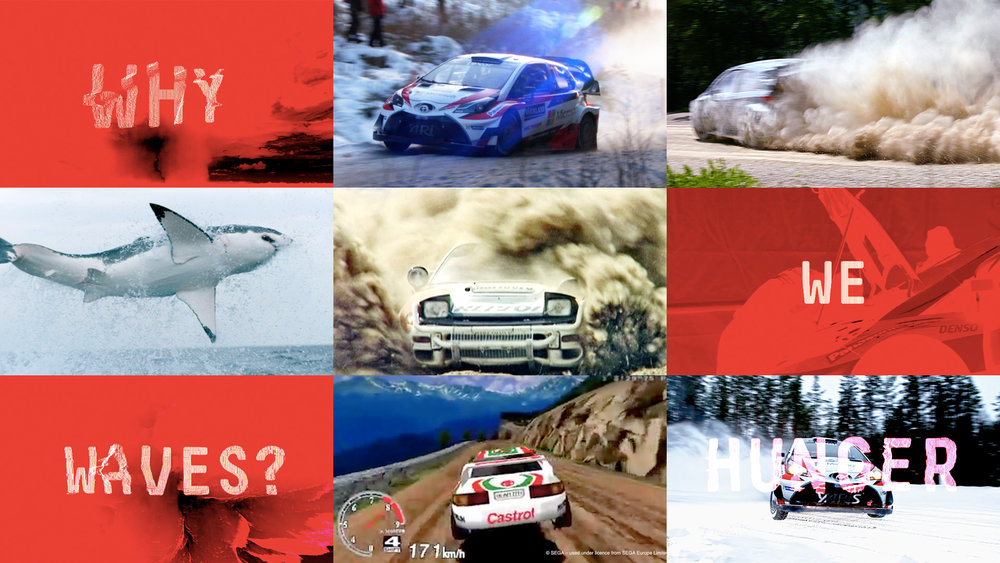 hayden peek - ToyotaWRC