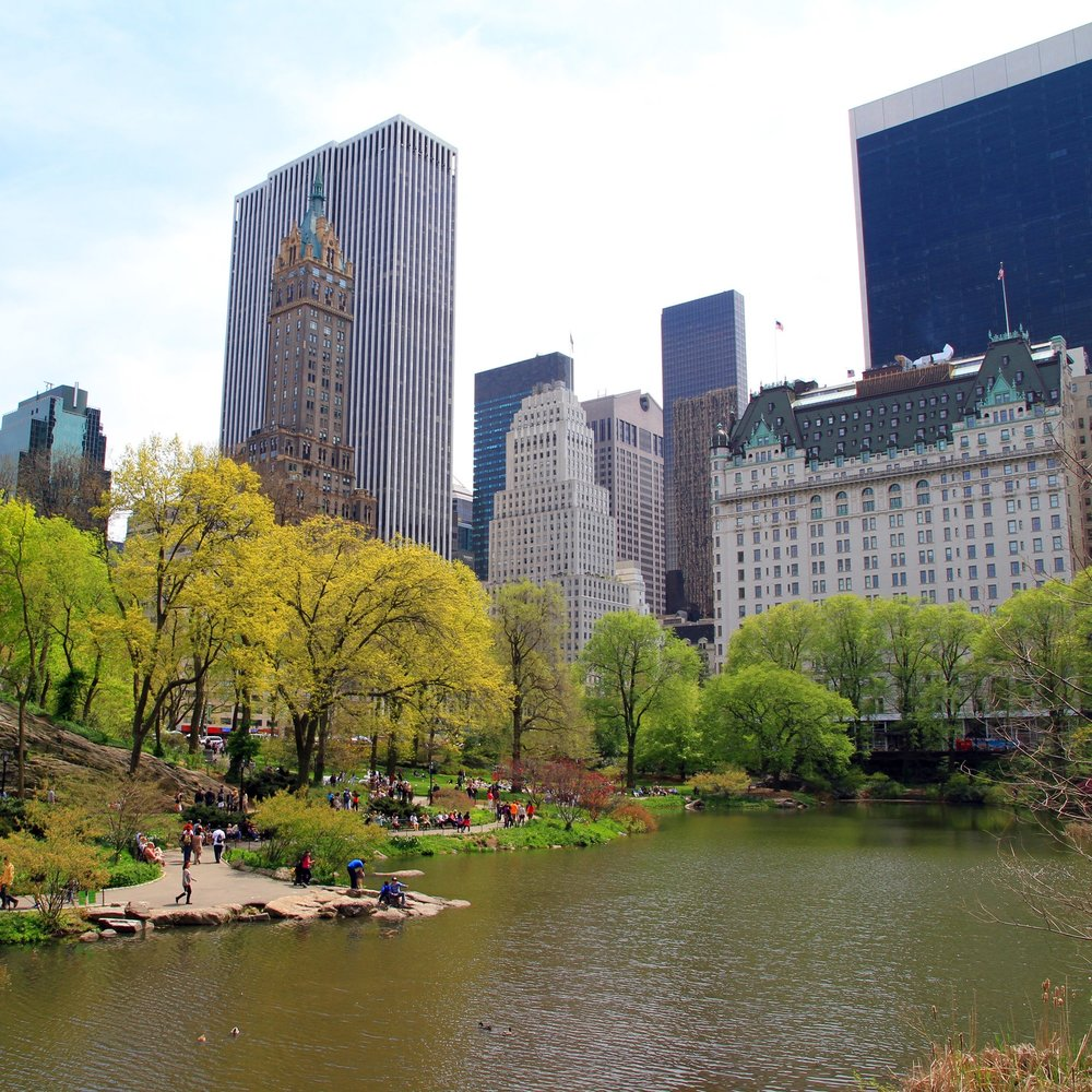 Central Park and Plaza Hotel