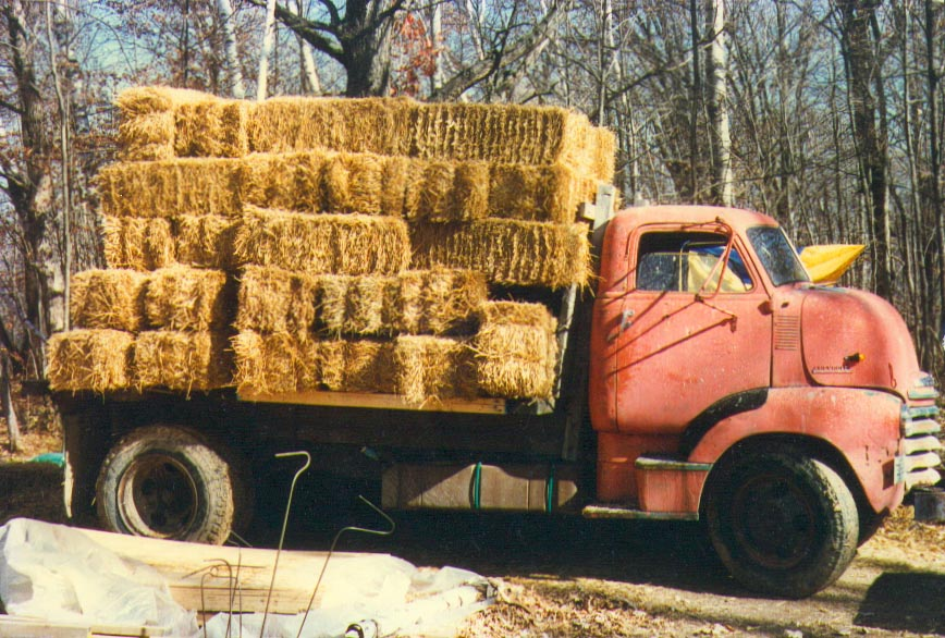 bulldog with bales.jpg