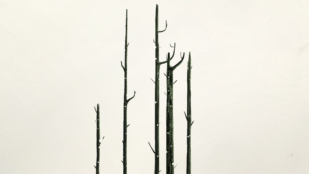 trees_169_2a.png