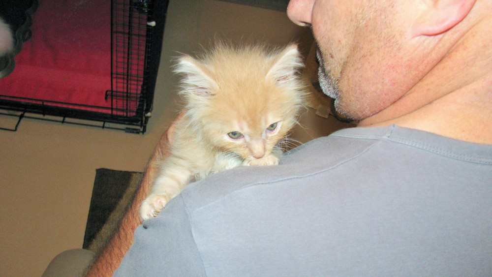 Steve holding Rudy the kitten on Wander Nature