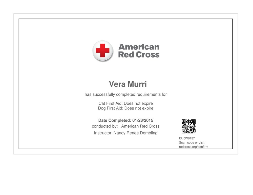 first aid-page-001.jpg