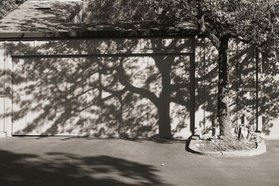 shadow-on-garage_sm.jpg
