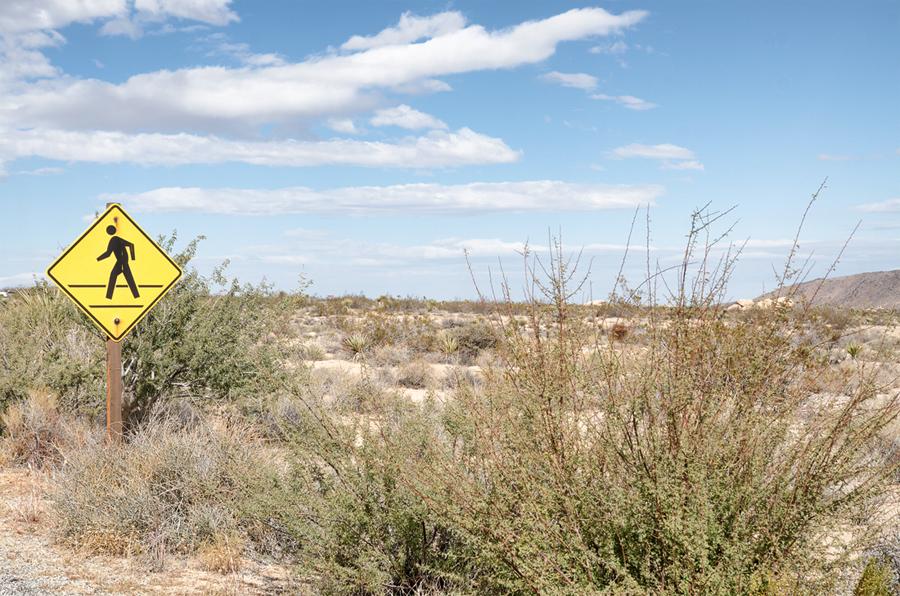 desert-signs-joshua-1_sm.jpg