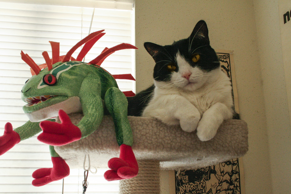 51: I promise this isn't a repeat from last time. Mei-Mei has taken to chilling with Murloc though.