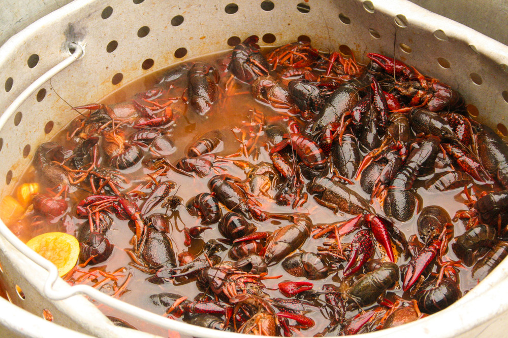 55: It's crawfish season again. Mr. LL's family is big into crawfish boils. You'll be seeing quite a few of these kind of pix in the future.