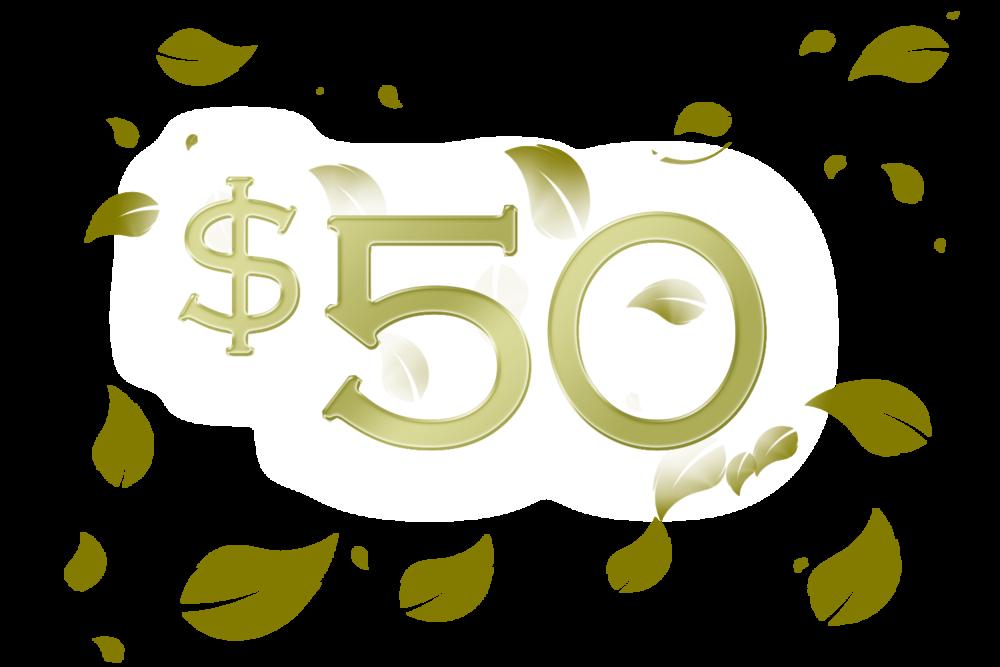 50 e gift certificate bodycentre day spa fitness center