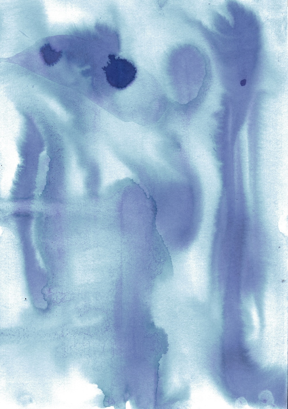 Ink Dyed Print.jpeg