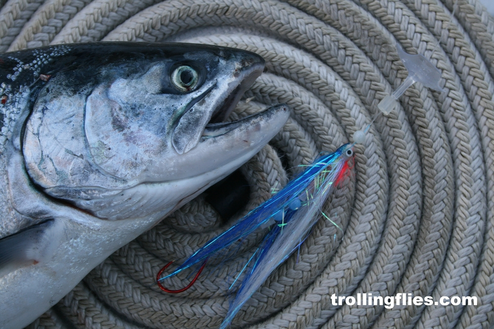 Trolling Flies- Salmon Series