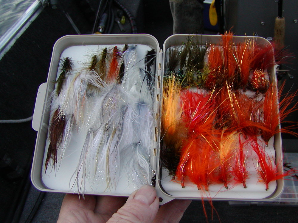 Fly Box II.JPG